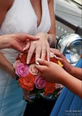 wedding david